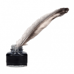 Feather Quill Pen Clipart transparent PNG - StickPNG
