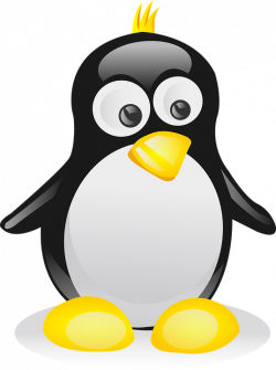 Penguin Pictures - BDFjade