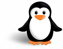28+ Collection of Penguin Clipart Png | High quality, free cliparts ...