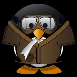 Fun Penguin Facts! – SpotsNest