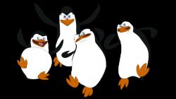 Madagascar penguins PNG images free download