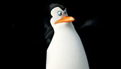 Kowalski | Characters | Penguins of Madagascar