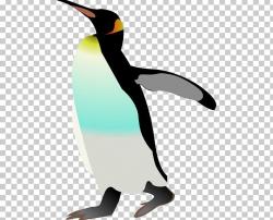 Emperor Penguin Bird PNG, Clipart, Adxe9lie Penguin, Beak ...