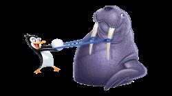 Penguin & Walrus   Pinterest   Slingshot and Penguins