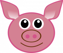Percy pig donates his organs   theglobalbrief
