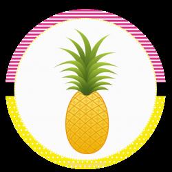 Pin by Marina ♥♥♥ on Festa Havaiana II | Pinterest | Flamingo and ...