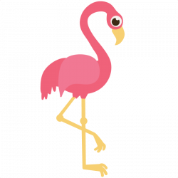 Flamingos or Flamingoes are a type of wading bird in the genus ...