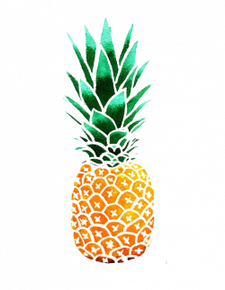 Pineapple Drawing Watercolor painting Clip art - pineapple 564*730 ...