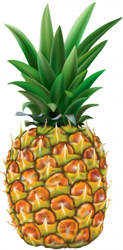 Pineapple Transparent PNG Clip Art Image | Gallery Yopriceville ...