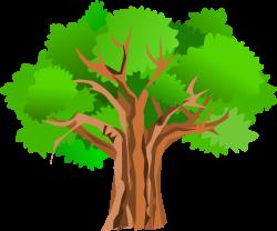 Summer Tree Cartoons Clipart - Clip Art Library