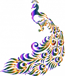 Peacock png clipart and images
