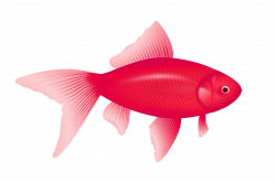 Fish PNG Clipart | Web Icons PNG