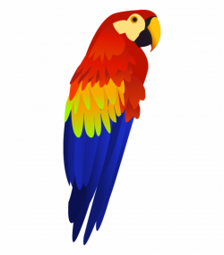 Colorful Parrot Png Images, Free Download, Download ...