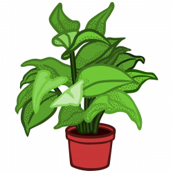 Clipart - potted plant - coloured