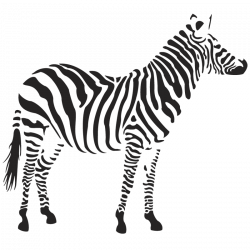 Zebra PNG Picture | Web Icons PNG