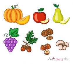 Autumn fruits clipart, pumpkin clipart, apple clipart, pear, grapes, acorn,  walnut, hazelnuts clipart, mushrooms, autumn vector illustration