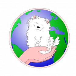 Success Stories - Page 1 — Y-Not Save a Sam Rescue