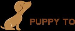 About Puppy to Dog School - puppytodogschool.com.au