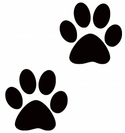 28+ Collection of Paw Clipart Transparent | High quality, free ...