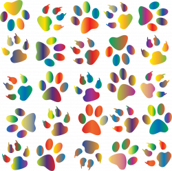 Clipart - Colorful Paw Prints Pattern Background Reinvigorated 4 No ...