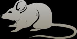 Rat clipart gray ~ Frames ~ Illustrations ~ HD images ~ Photo ...