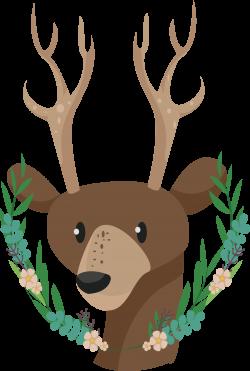 Reindeer Antler Sika deer Clip art - Sika Deer title box 2135*3176 ...