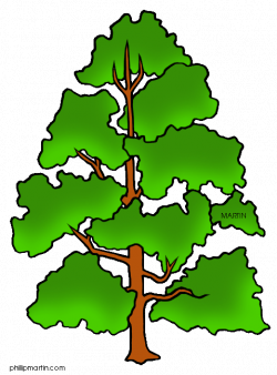 Cartoon Tree: Martin | LB: Pictures that Rock | Pinterest | Tree ...