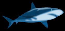 CodePen - Under the sea