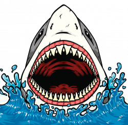 Shark Jaws Shark tooth Clip art - Blood basins of the shark ...