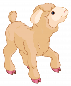28+ Collection of Sheep Clipart No Background | High quality, free ...