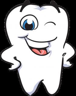 Human tooth Smile Dentistry Clip art - Teeth joy 680*858 transprent ...