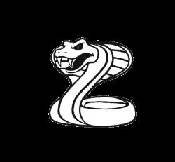 King cobra Black mamba Snake Clip art - snake 600*555 transprent Png ...