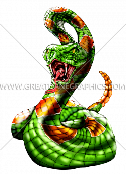 Rattle Snake | Production Ready Artwork for T-Shirt Printing