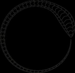 Clipart - Snake Frame