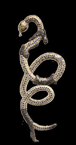 Snake Shedding Skin transparent PNG - StickPNG