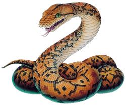 Drop Down 1 | Pinterest | Snake