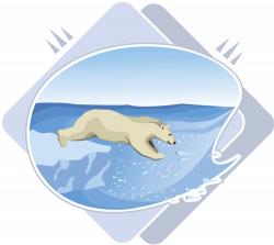 Polar Bear Clipart swimming - Free Clipart on Dumielauxepices.net
