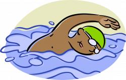 Competitive Swimmer Swims Backstroke - Vector Image
