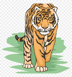 Free Tiger Clipart For Teachers - Tiger Clipart, HD Png ...