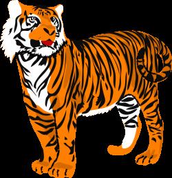 Tiger Clip Art | Clipart Panda - Free Clipart Images