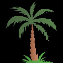 Clipart - Palm Tree - Colour