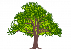Clipart - tree3 coloured