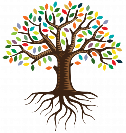 28+ Collection of Tree Of Life Clipart Transparent | High quality ...