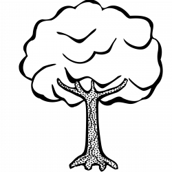 Clipart - tree - lineart