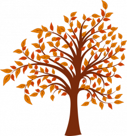 80+ Free Trees Clipart Images 【2018】