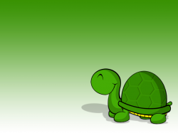 Turtle Wallpaper by Shaggy87 on DeviantArt