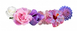 tumblr transparent | Transparent Flower Crown Tumblr ...