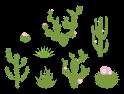 Bushes clipart desert vegetation ~ Frames ~ Illustrations ~ HD ...