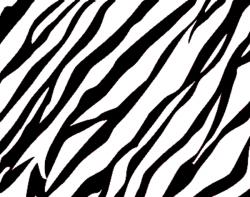 Zebra Print Background | Free Images at Clker.com - vector ...