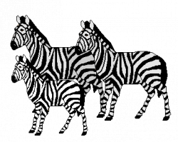 Pink zebra clipart free images - WikiClipArt